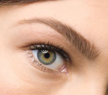 brow wax blog